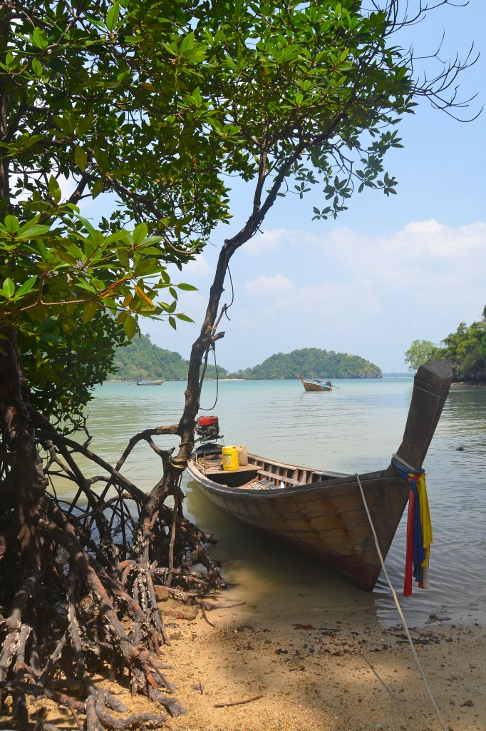 Mangroves and longtail at Railay East