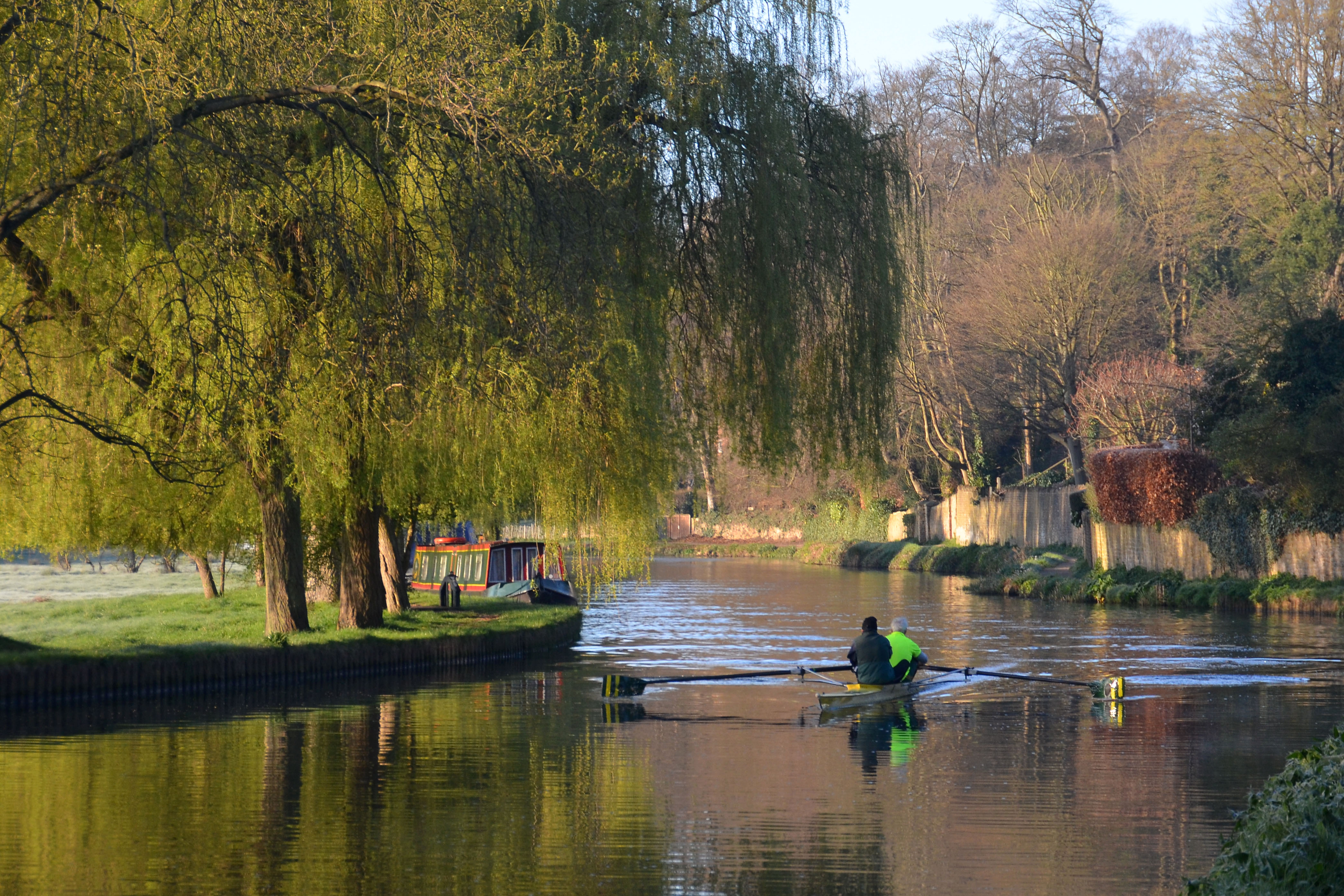 Rowing on the Wey Navigation at Millmead, Guildford