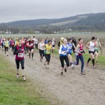 XC-league-Feb2013-Denbies09