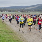 XC-league-Feb2013-Denbies10