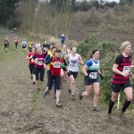 XC-league-Feb2013-Denbies11