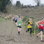 XC-league-Feb2013-Denbies12