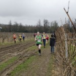 XC-league-Feb2013-Denbies13