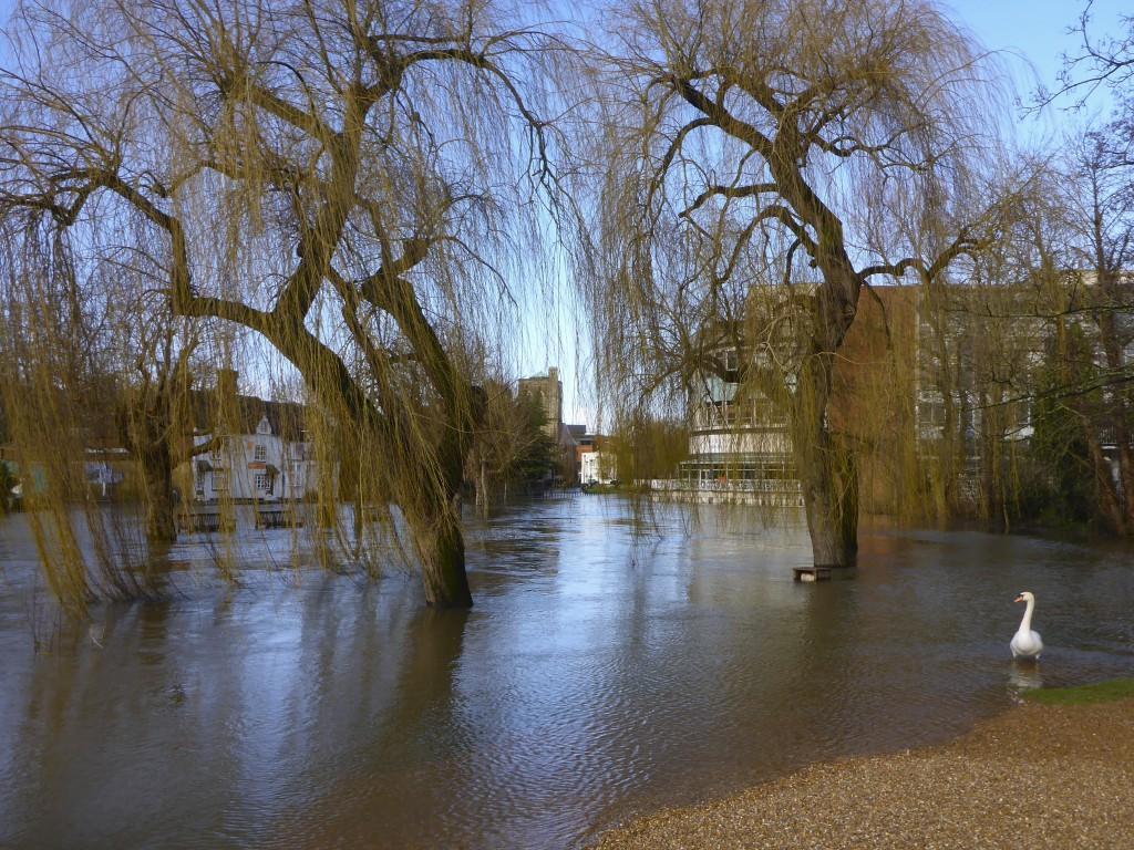 floods7